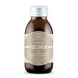 HUMAN Feel Great shot Ingefær Ø, 100ml.