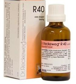 Dr. Reckeweg R 40, 50ml.