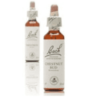 Bach Valnød 33, 20ml.