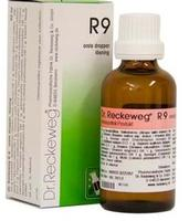 Dr. Reckeweg R 9, 50ml.
